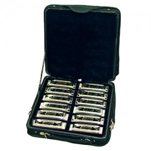 Johnson Blues King Harmonica Set - All 12 Keys - Case Included - Model BK520